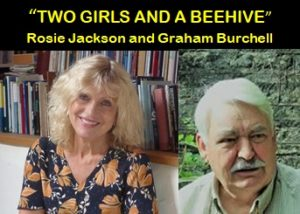 Two Girls and a Beehive poster