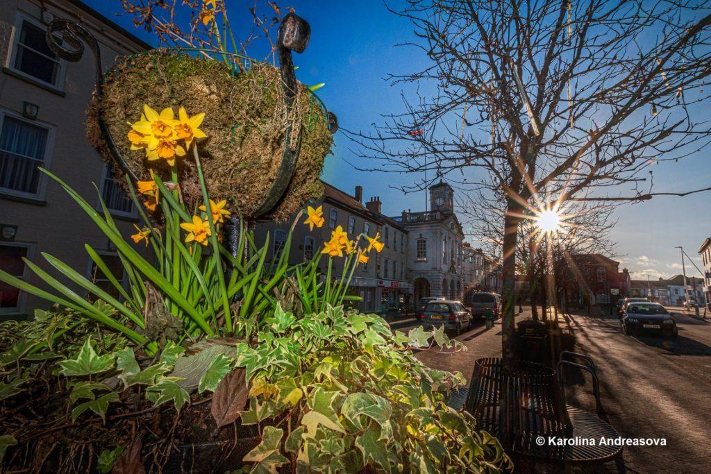 South Molton in Bloom by Karolina Andreasova